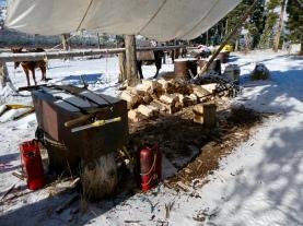 Destination wood pile